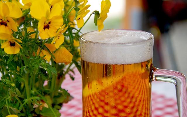 kytky u piva